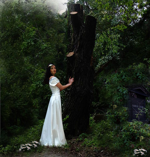 Elfenkleid Silberborte Brautkleid Hochzeitskleid mittelalterliche Hochzeit