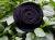 Filzblüte Wollblüte Lagenlook Ansteckblüte schwarz
