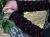 Wollstulpen Punkte rot schwarz Armstulpen Stulpen